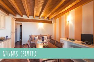 atunis-suite-1
